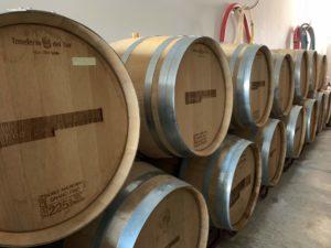 Bodegas Bentomiz Vineyard in Competa Andalucia
